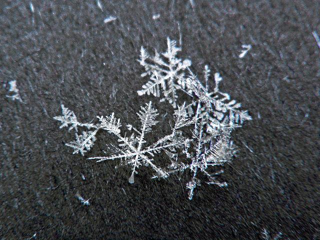 640px-snow_flakes